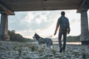 educateur canin angers brissac maine et loire 49 cours individuel education canine agressivite