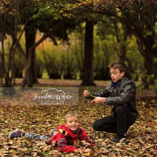 Autumn in Edworthy