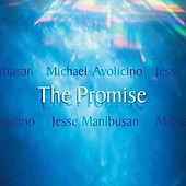 M Avolicinopromise-cover.jpg