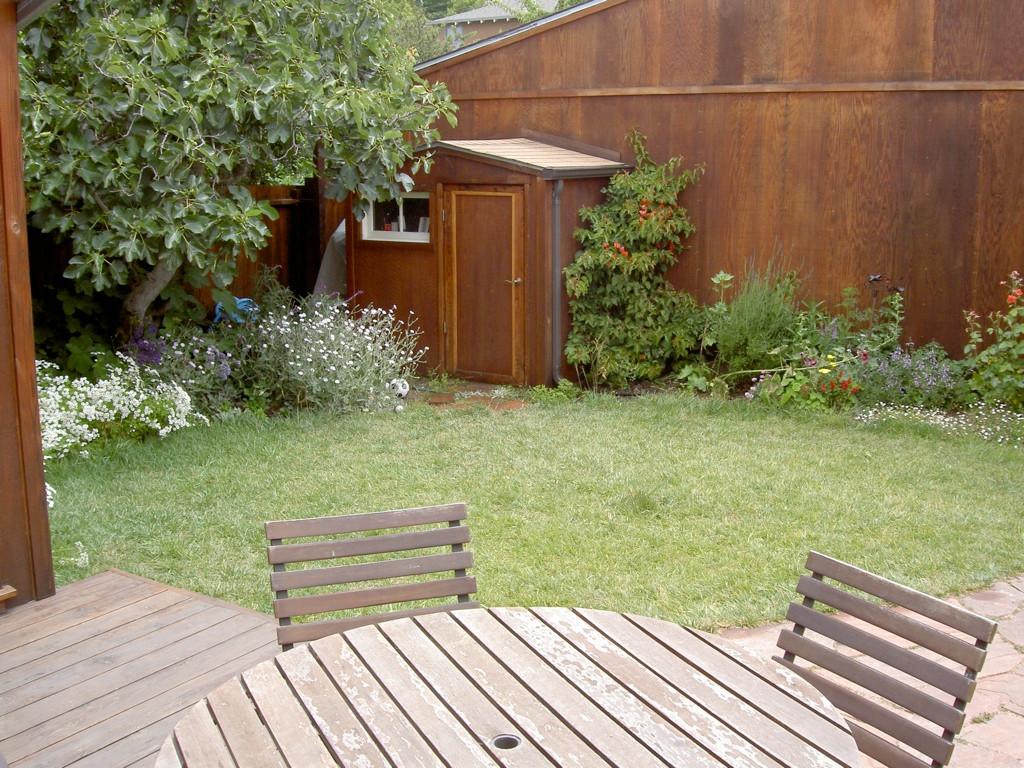 The garden outside the studio