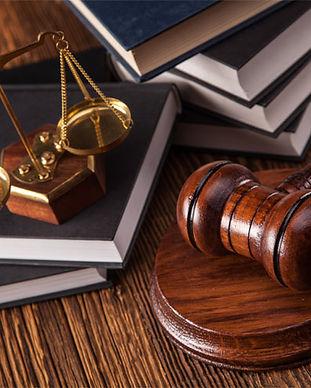 Justicia Intrapartidaria y elecciones_MS