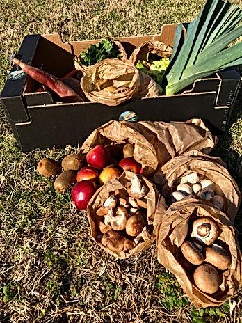 Cabaz frutas e legumes