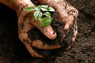 Agricultura sustentável e biológica