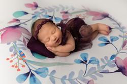 newborn baby photos in St. Neots