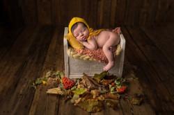 newborn bedford photoshoot
