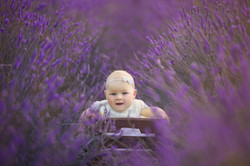 Baby photography Bedford