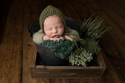 baby photos bedford
