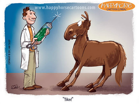 COMMON EQUINE DISEASES & RECOMMENDED VACCINE COMBINATIONS.