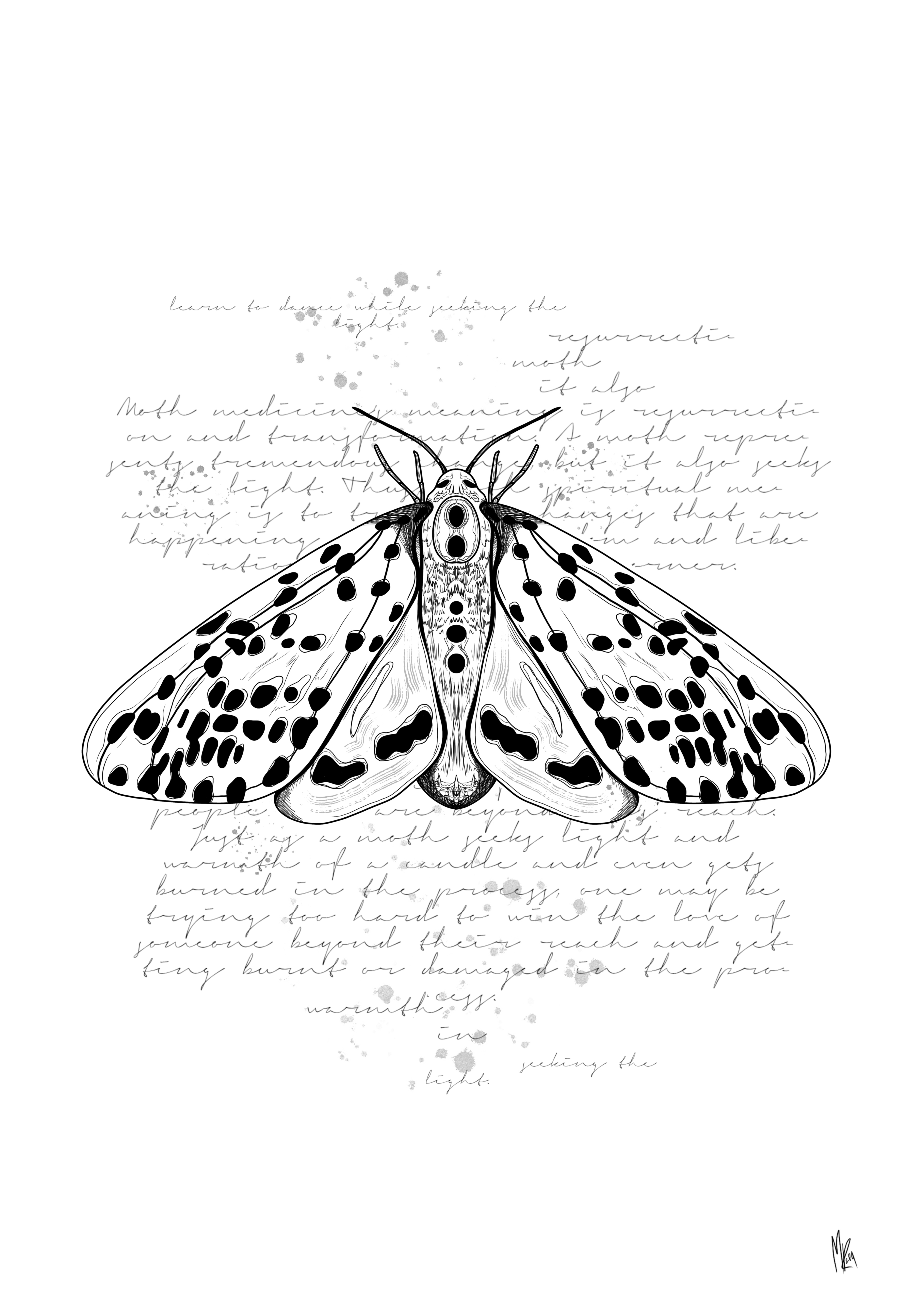 Moth 2.jpg