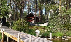 La Cabane des Myrtilles