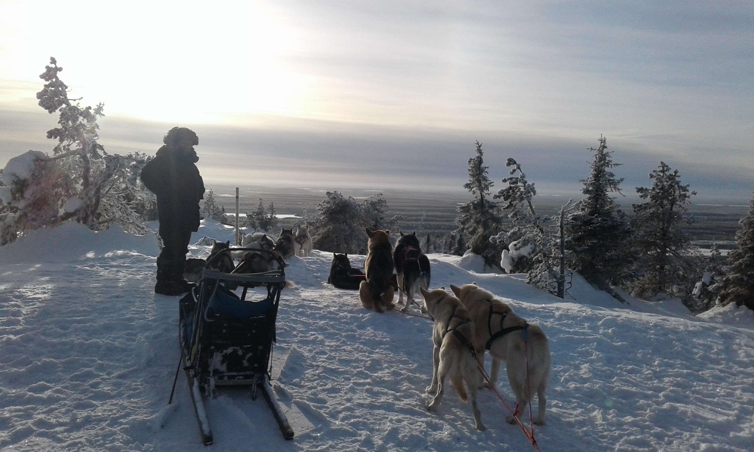 Iivaara Finlande Laponie
