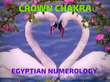 EGYPTIAN NUMEROLOGY; CROWN CHAKRA & SWAN MEDICINE