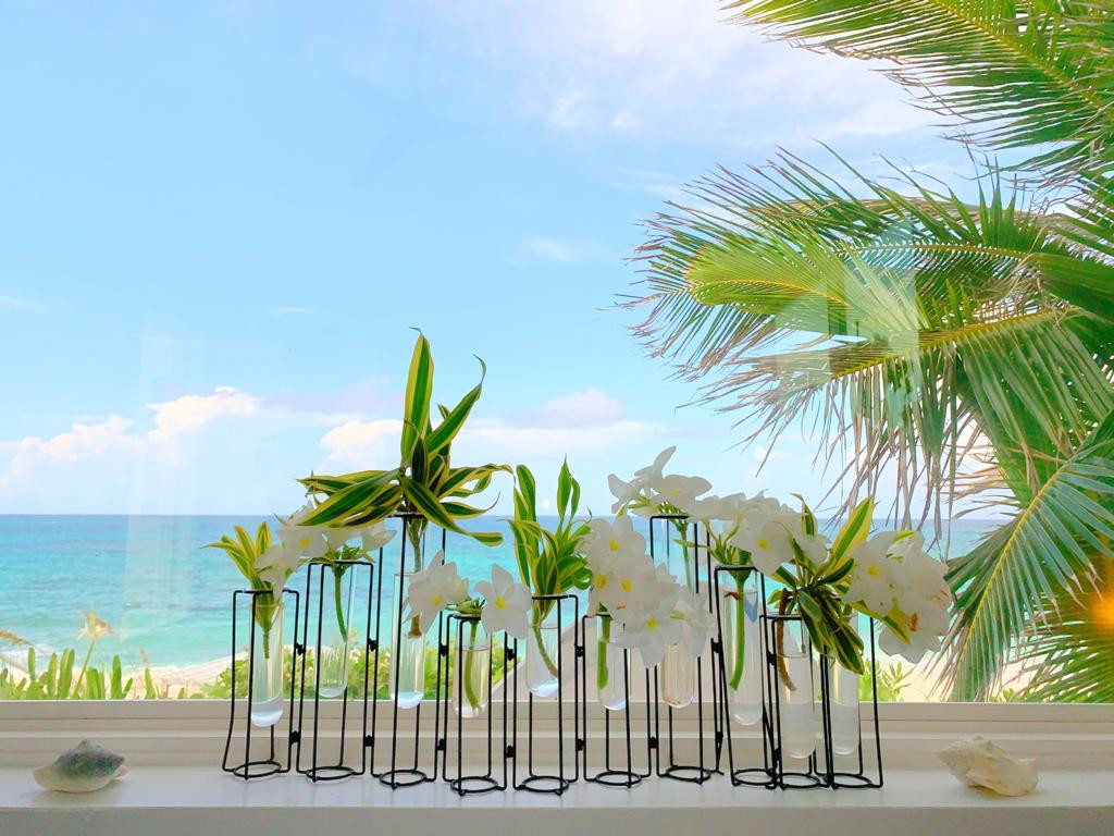 Bahamasflowers.jpeg