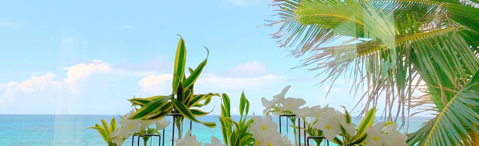 Bahamas flowers in shower