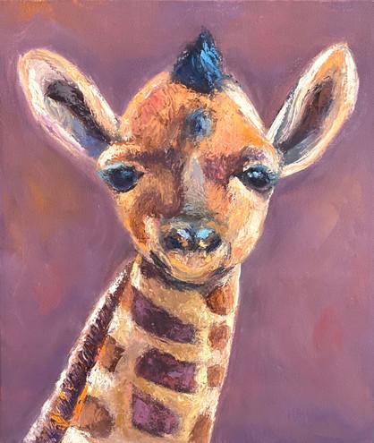 Gia the Giraffe