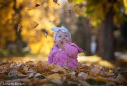 bree in leaves 2 (1 of 1)