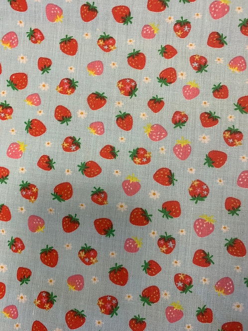 Strawberry on sky blue background