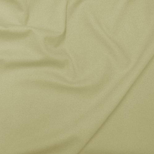 1666 - Canvas Plain Cream