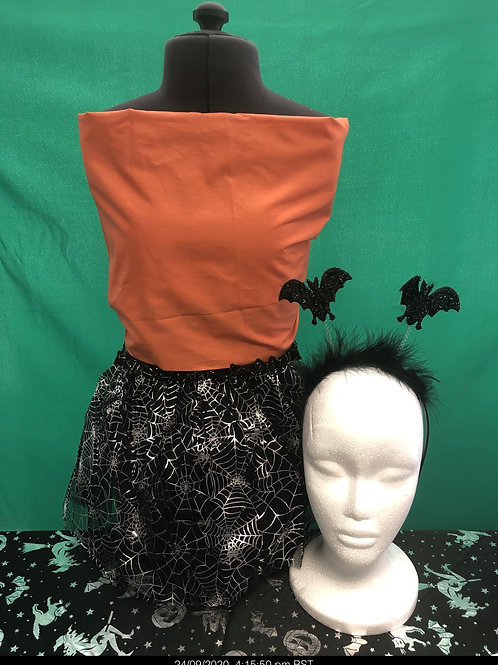Silver spider Tutu and headboppers set