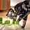 Thumbnail: Aikiou Stimulo Interactive Feeder