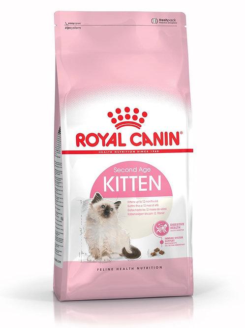 Royal Canin: Kitten 36 (10 kg)
