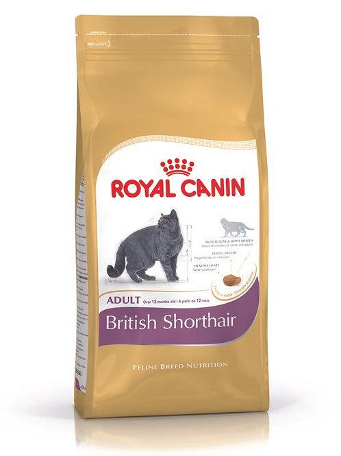 Royal Canin: British Shorthair  (4 kg)