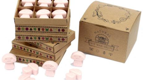 Dark Sandalwood Box of 6 Wax Melts