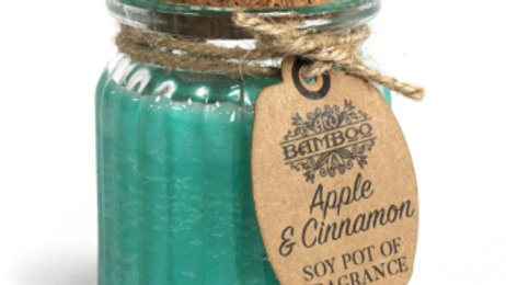 2x Apple & Cinnamon Soy Pot of Fragrance Candles