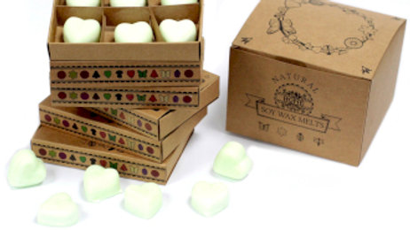 Apple Spice Box of 6 Wax Melts