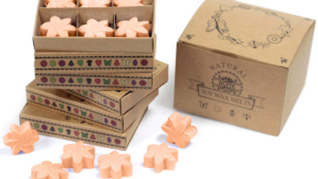 Tuberose Box of 6 Wax Melts