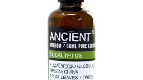 Eucalyptus 50ml Pure Essential Oil