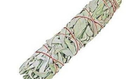 White Sage 15cm Smudge Stick