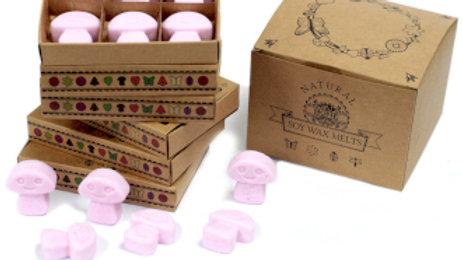 Ylang Ylang Box of 6 Wax Melts