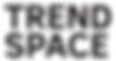 Логотип Trend Space