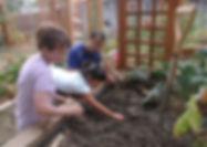 PlantingGarlic.JPG