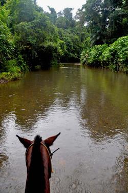 Horseback riding tour in Drake Bay
