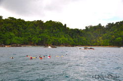 Snorkeling tour at Cano Island