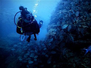 Buceo y snorkeling en Isla del Caño