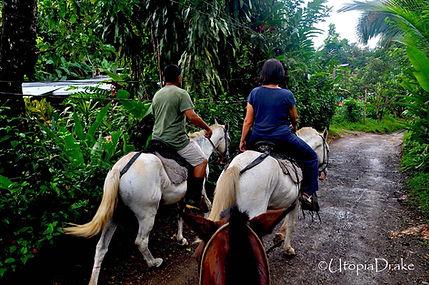 Tour a caballo en Bahía Drake