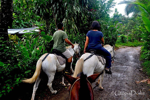 Horseback riding in Drake Bay