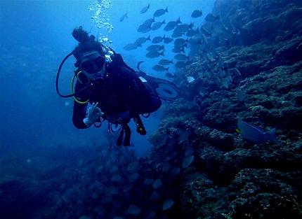 Scuba diving at Cano Island