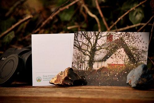 Winter Cottage Postcard