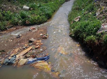 Cours d'eau pollués et malades en série près des industries