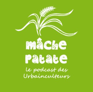 Podcast | L'engagement social