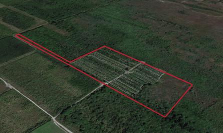 SW 372nd St Florida City - Aerial.jpg