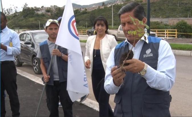 5000 plantas donadas por la Prefectura se utilizan en la forestación del anillo vial