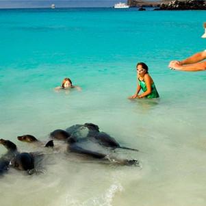 Quienes cuenten con certificado de vacunación podrán ingresar a Galápagos sin PCR