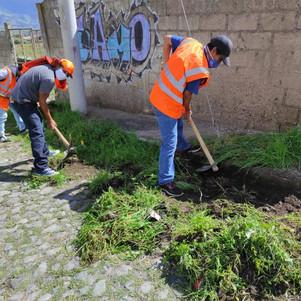 Ciudadanía que incumple el toque de queda realiza trabajo comunitario en Antonio Ante