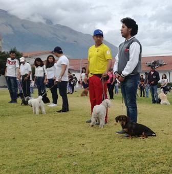 VII curso de adiestramiento canino en Ibarra
