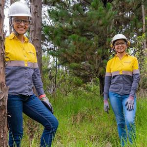 Empresas, agentes activos para mitigar el impacto ambiental